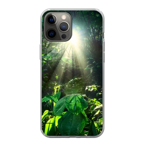 Mobilskal regnskog